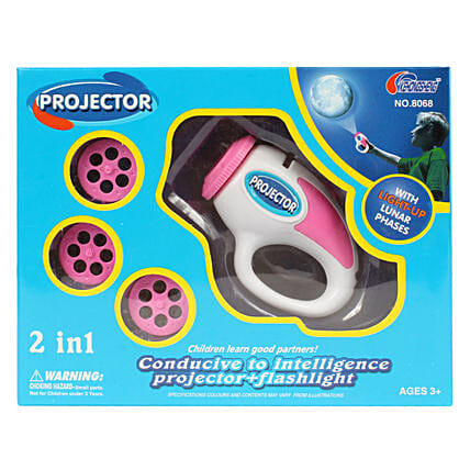2 In 1 Electric Projection Slides: Kids Toys & Games