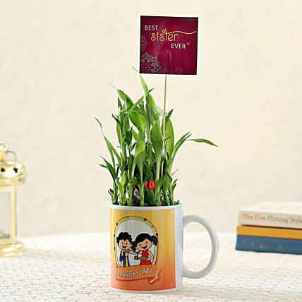 2 Layer Bamboo Plant For Best Sister