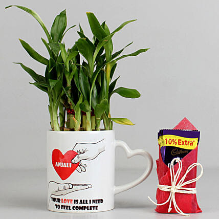 2 Layer Lucky Bamboo Plant with Cadbury Dairy Milk: Chocolates for Valentines Day