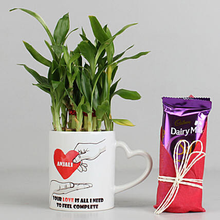 2 Layer Lucky Bamboo Plant with Dairy Milk Silk Chocolates: Cadbury Chocolates