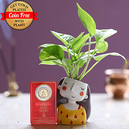 24 Carat Coin Free With Money Plant: Ornamental Plant Gifts