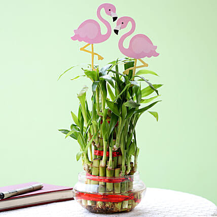 3 Layer Bamboo Plant With Flamingo: