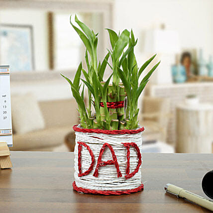 A Lucky Gift For Father: Send Plants For Fathers Day
