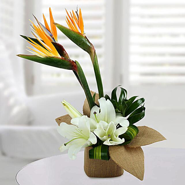 Asiatic Lily Arrangement: Send Lilies