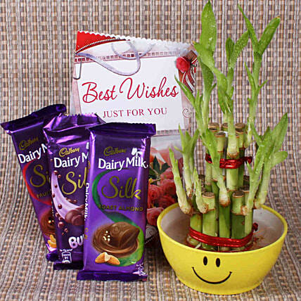 Best Wishes With Lucky Bamboo: Indoor Plants