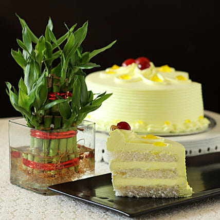 Butterscotch Cake With Bamboo Plant: