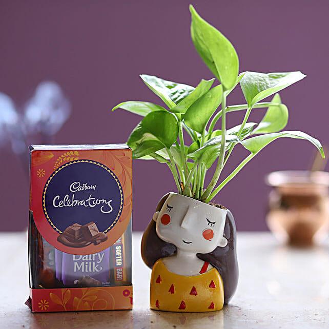 Cadbury Celebrations & Money Plant:
