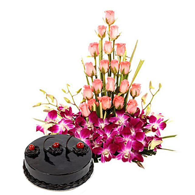 Colour N Cake: Premium Gifts