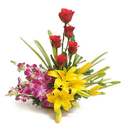 Colourful Blooms Basket Arrangement: Flower Basket