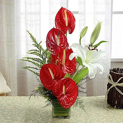 Dare To Love: Send Anthuriums