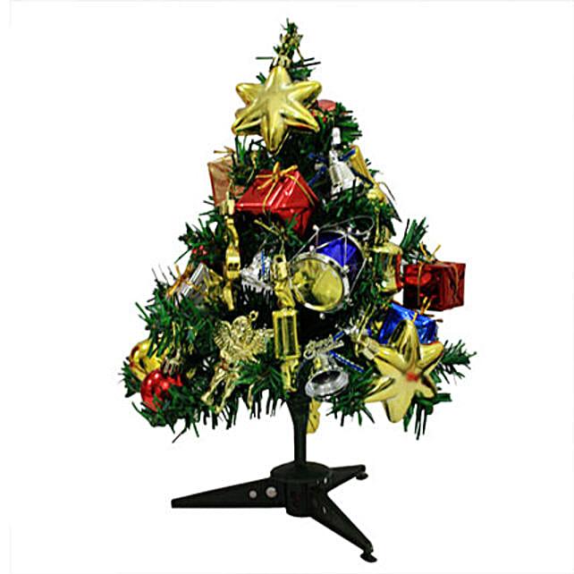 Delight your Christmas: Christmas Trees & Plants