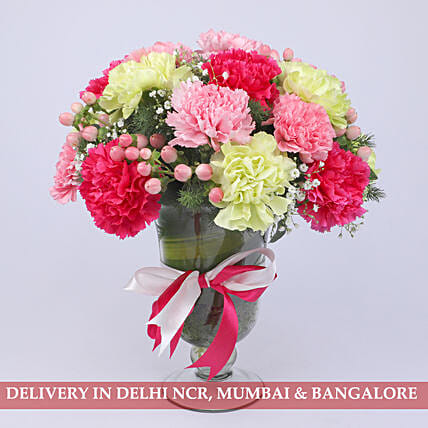 Delightful Colourful Carnations Arrangement: Send Carnations