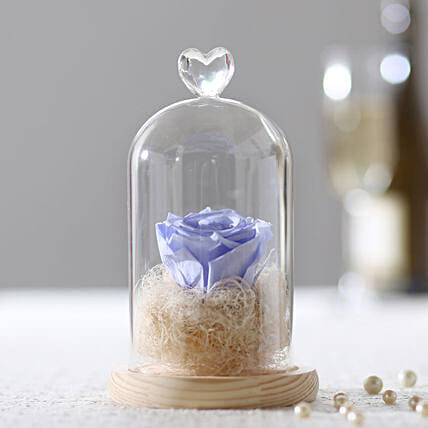 Forever Lavender Blue Rose In Glass Dome: Roses