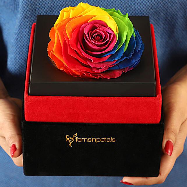 Big Forever Rainbow Rose in Black Velvet Box: Flowers for Valentines Day