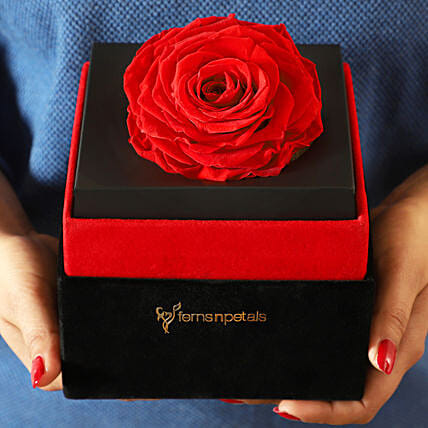 Big Forever Red Rose in Black Velvet Box: Flowers for Valentines Day