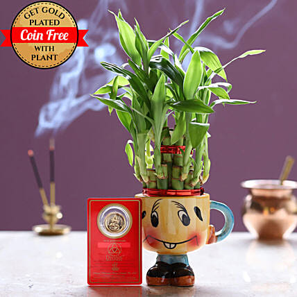 Free Gold Plated Coin With Lucky Bamboo Smiley Pot: Ornamental Plants
