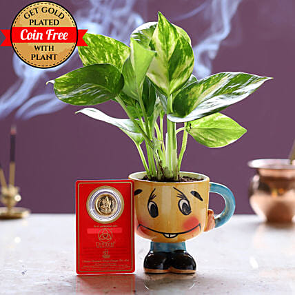 Gold Plated Coin Free With Money Plant Smiley Pot: Ornamental Plants