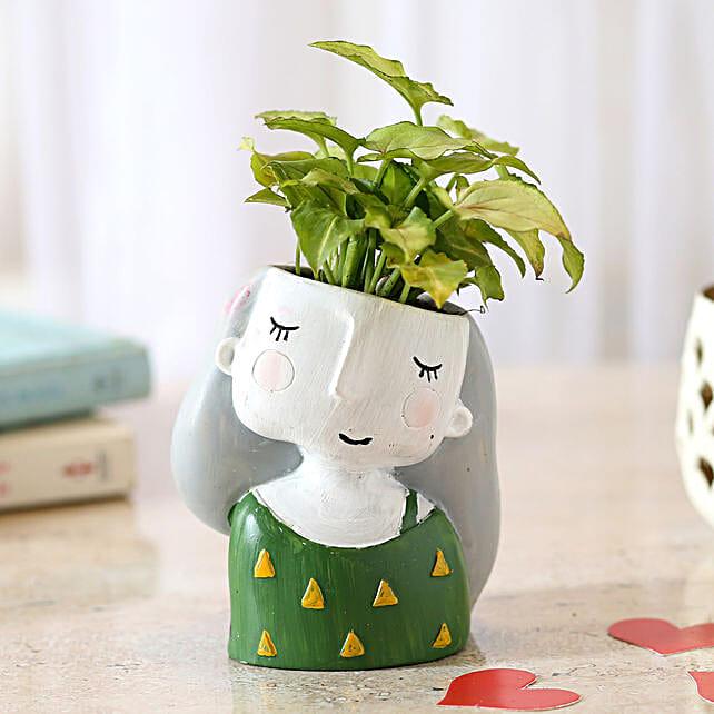 Green Syngonium Plant In Raisin Pot: Buy Indoor Plants
