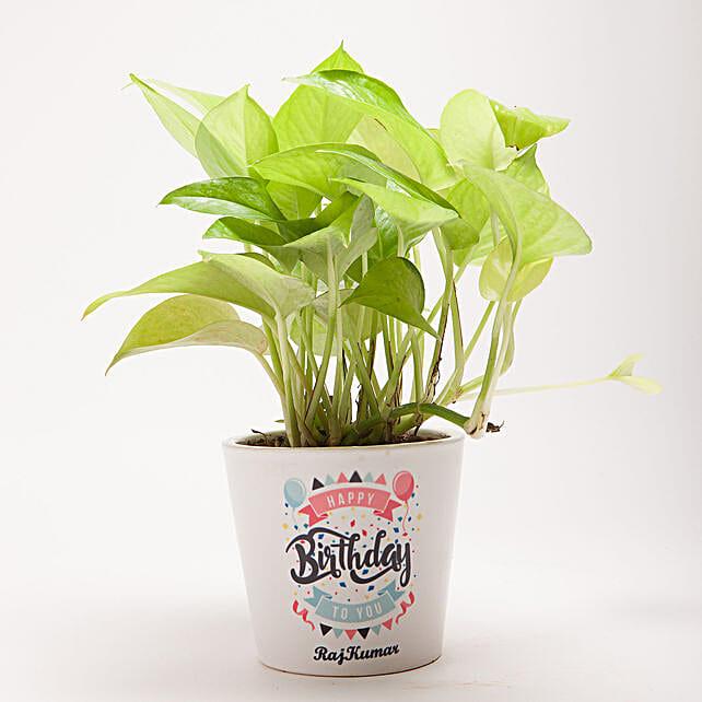Happy Birthday Golden Money Plant: Personalised Pot plants