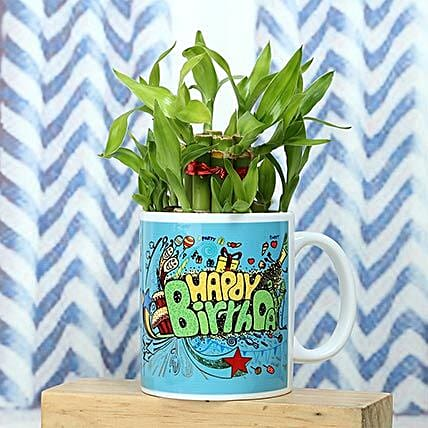 Healthy Celebration: Send Lucky Bamboo for Birthday