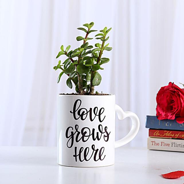 Jade Plant In Love Special Ceramic Mug: Cactus and Succulents Plants