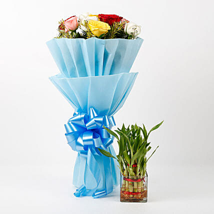 Mixed Roses & Two Layer Lucky Bamboo Combo: Gift Ideas