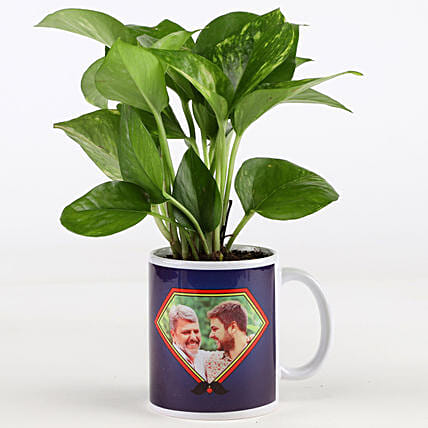Money Plant In Personalised Mug For Dad: Same Day Delivery Personalised Gifts