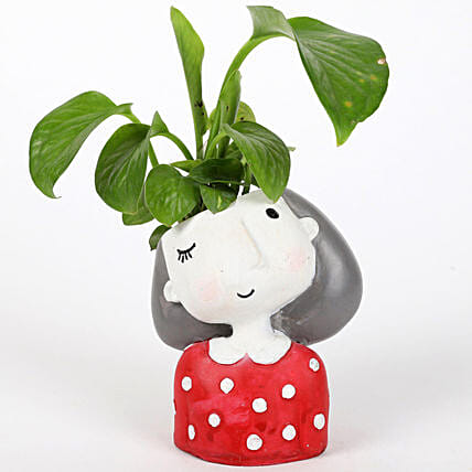 Money Plant In Winking Girl Raisin Pot: Indoor Plants