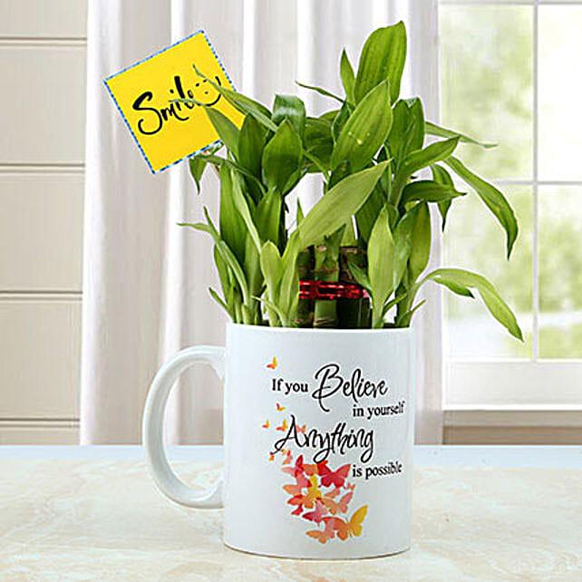 Mug with Bamboo Plant: Bathroom Plants