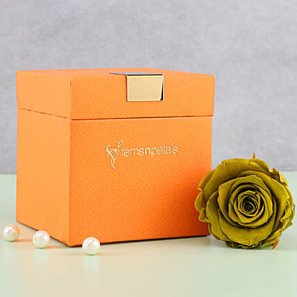 Olive Green Forever Rose in Orange Box: Kiss Day Gifts
