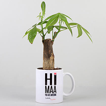 Pachira Plant In Personalised Hi Maa Mug: Personalised Pot plants