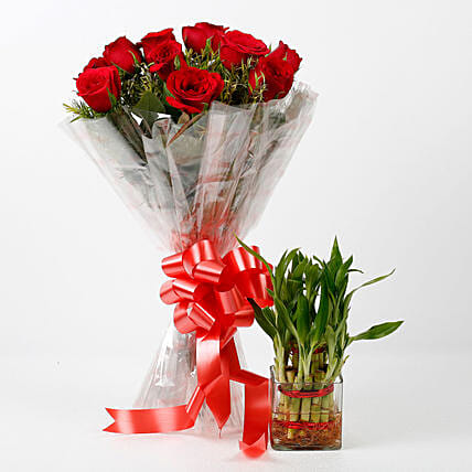 Red Roses & Two Layer Lucky Bamboo Combo: Flowers N Plants