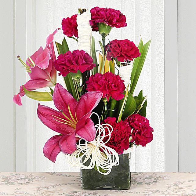 Serene Carnation: Carnations