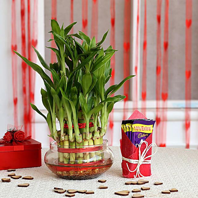 Three Layer Lucky Bamboo with Cadbury Dairy Milk: