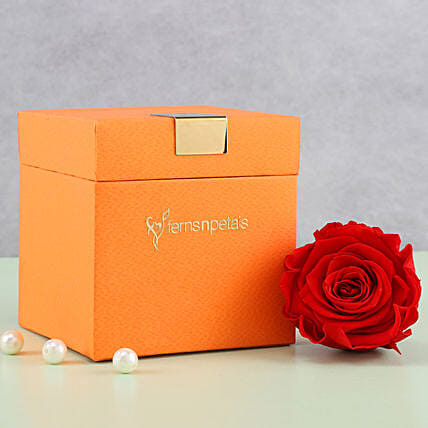 Timeless- Forever Red Rose in Orange Box: Forever Roses