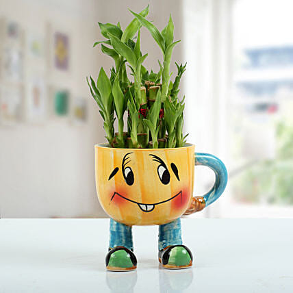 Two Layer Bamboo Plant With Smiley Vase: Lucky Bamboo for Friendship Day
