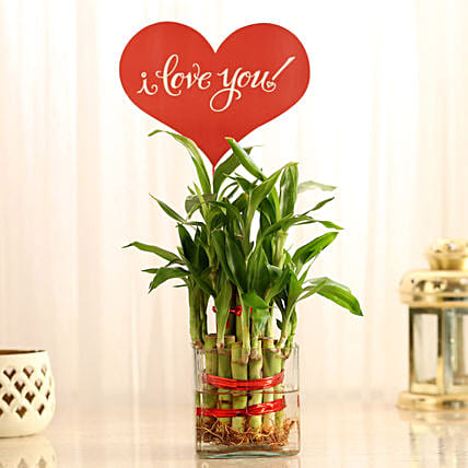 Two Layer Lucky Bamboo With I Love You Tag: Buy Indoor Plants