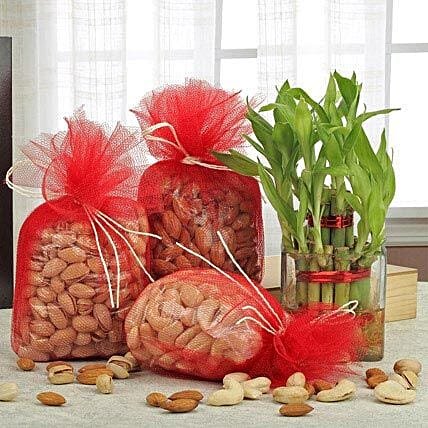 Love For Combo: Gift Hampers Ahmedabad