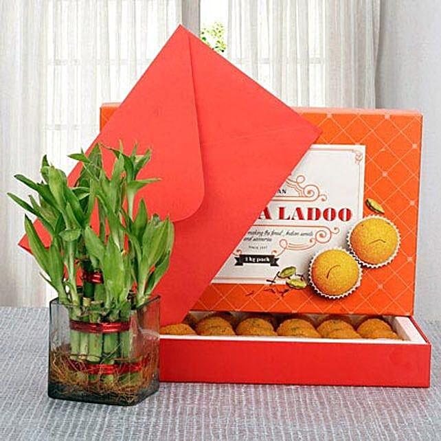 Moti Choor Opulence: Order Plants n Sweets