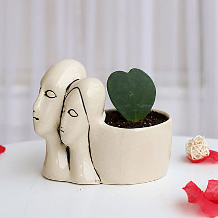 Hoya Plant in Couple Pot: Home Decor