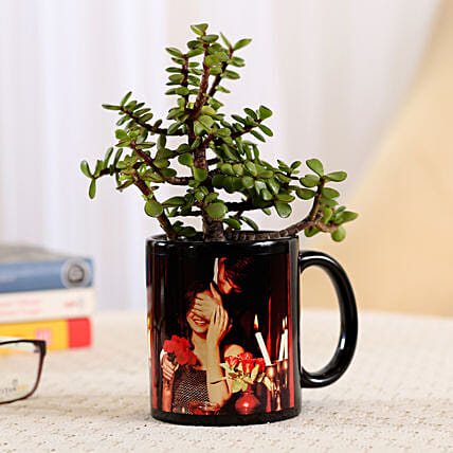 Jade Plant In Black Personalised Mug: Send Plants for Anniversary