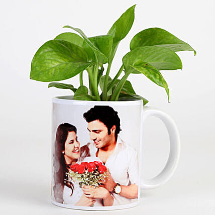 Money Plant In Personalised Mug-White: Plants for anniversary