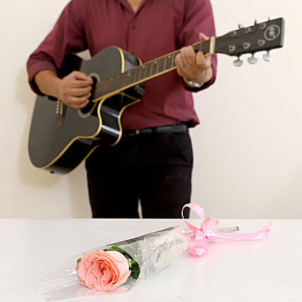 Single Pink Rose Musical Combo: Gifts N Guitarist Service