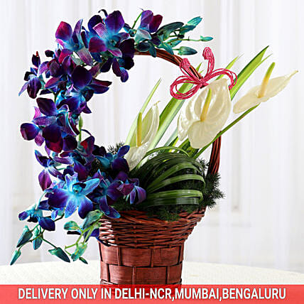 Basket of Purple Orchids & Anthuriums: Birthday Gifts for Wife