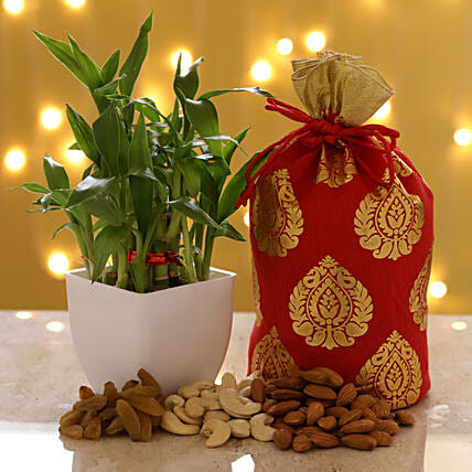 2 Layer Bamboo & Dry Fruits: Ornamental Plants