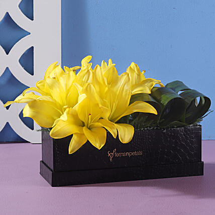 Box Of Yellow Asiatic Lilies: Send Lilies
