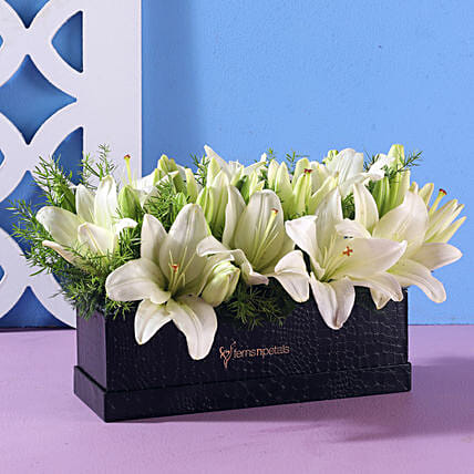 Elegant White Asiatic Lilies: White Flowers