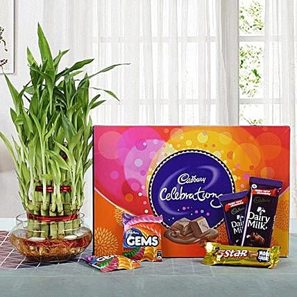 Yummy Chocolates N Three Layer Bamboo Plant: Send Diwali Gift Hampers