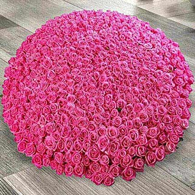 500 Dark Pink Roses Arrangement: