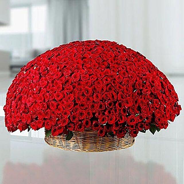 800 Red Roses Basket: